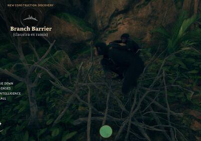 Branch Barrier (Claustra ex ramis).jpg