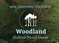 Hollow Pond Oasis.png