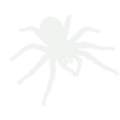 Spider Icon.png
