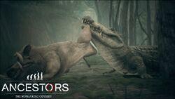 Crocodile Catches Giant Warthog.JPG.jpg