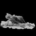 Evolution Feat - Astute Dominator Otter.png