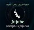 Jujube.png