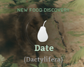 Date.png