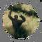 Ardipithecus Ramidus - Locus of Control - ZO 02.png