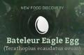 Bateleur Eagle Egg.png