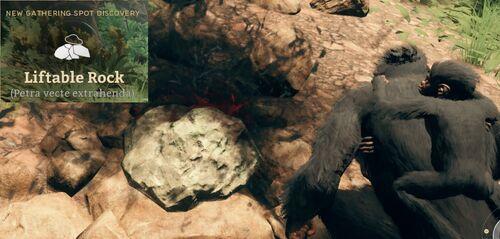 Liftable Rock (Petra vecte extrahenda).jpg