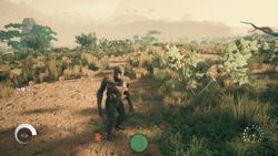 Ancestors Screenshot - Gatherer.png