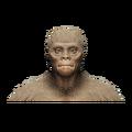 Species Headshot 5.png