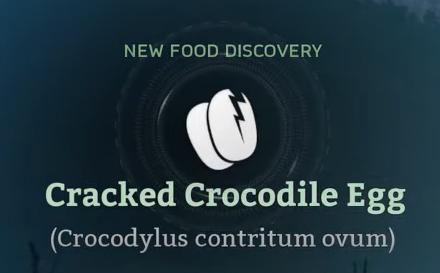 Cracked Crocodile Egg.png