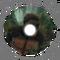 Australopithecus Afarensis - Encephalization - NP 03.png
