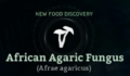 African Agaric Fungus.png