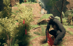 Ape with Taami Berries.png