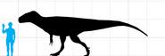 Megalosaurus2