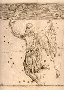 Uranometria orion