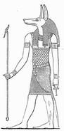 Anubis MK1888