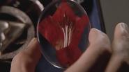 Siara's Flower S04xE08 Conduit to Destiny