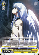 Weiss Schwarz-End of the Confrontation