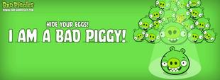 Свині Маленька Рекламка 02