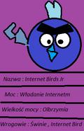 Internet BIrds Jr