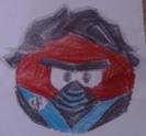 Ninja Pawel1631