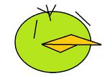 Marcin bird