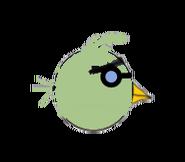 Cobbler Bird
