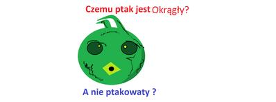 Filozoptak.png