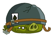 Swinia kapral