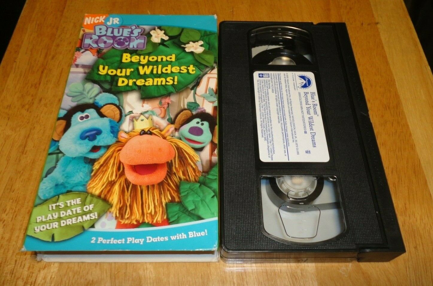 Blue's Room: Beyond the Wildest Dreams! (2005 VHS)