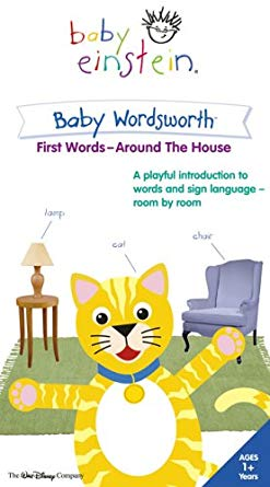 Baby Einstein: Baby Wordsworth First Words Around the House (2005 VHS)