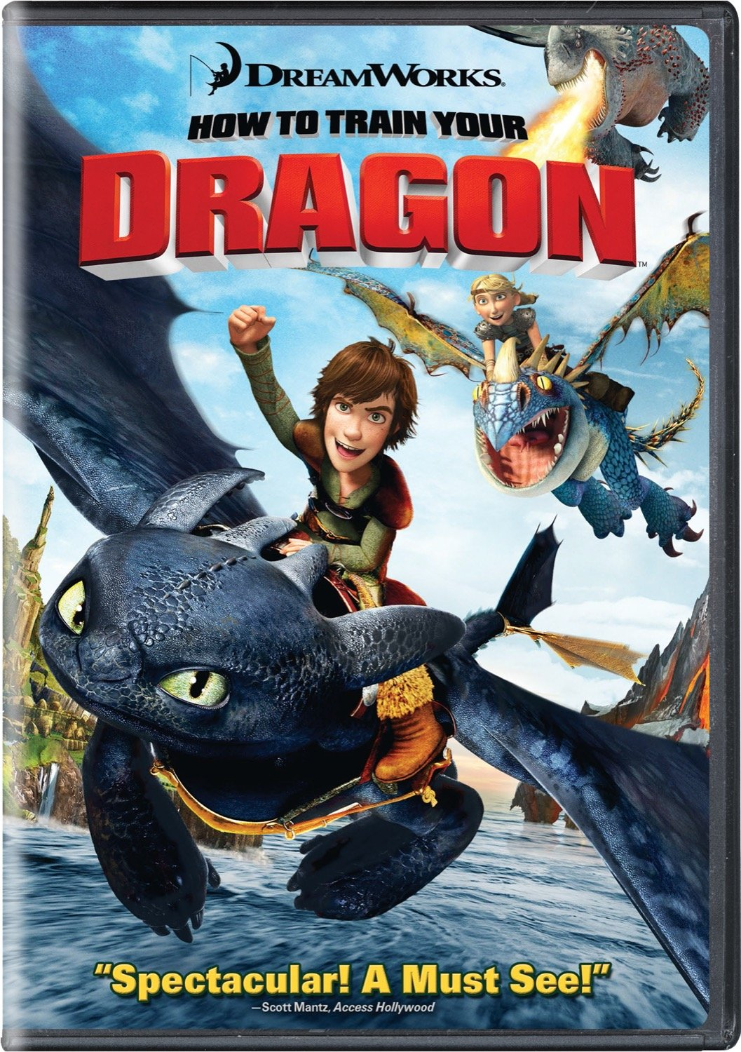 How to Train Your Dragon (2010 DVD)