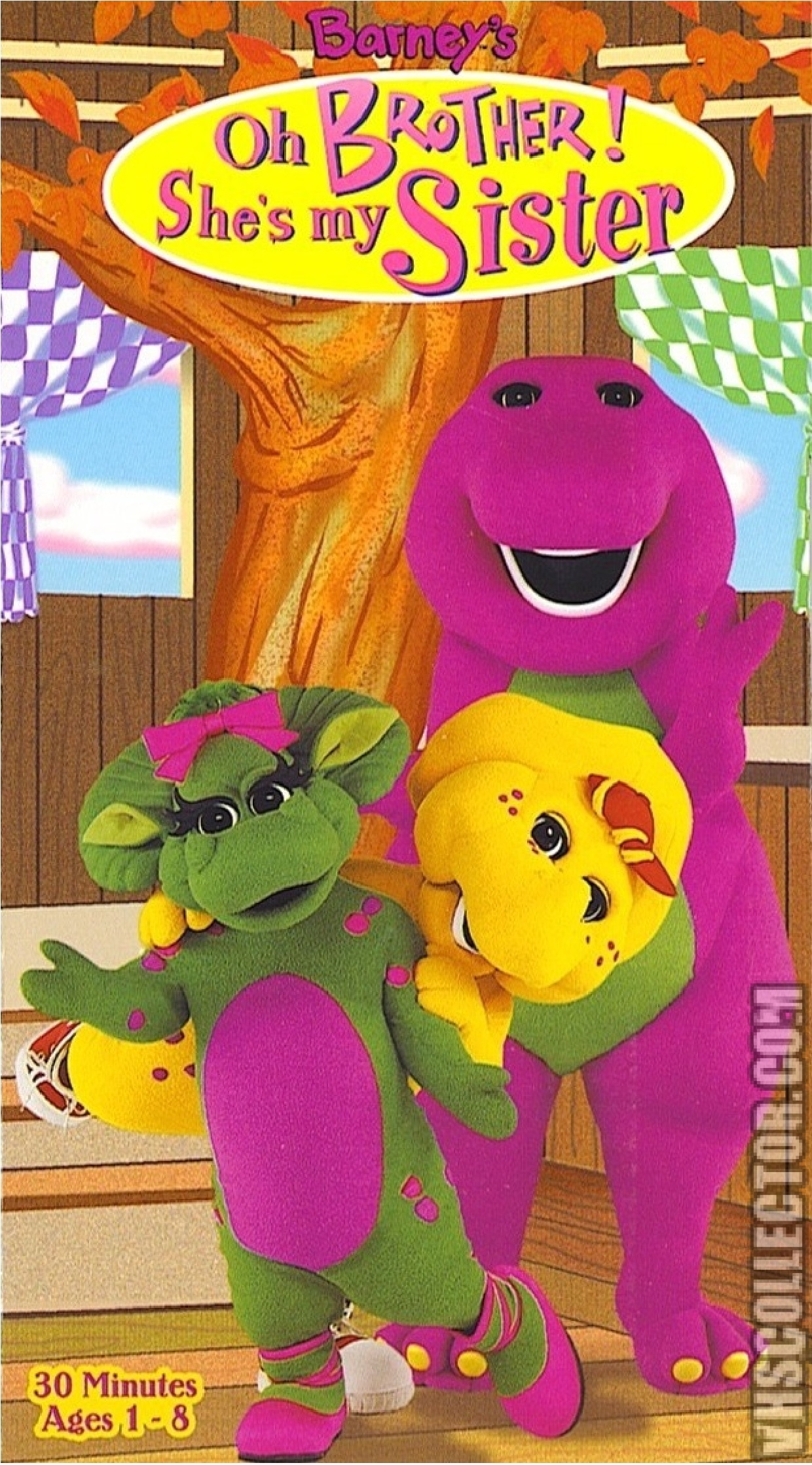 Barney: Oh Brother! She's My Sister (1998 VHS)