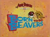 Born to Be Beavers