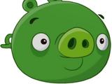 Свиньи-миньоны