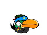 Генерал Company Of Birds