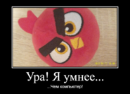 КАДР18