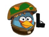 Птицы-солдаты