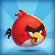 Angry Birds 2 1st birthday icon