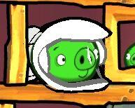 Gravity Pig-1.jpeg