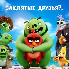 Kinopoisk.ru-The-Angry-Birds-Movie-2-3379659.jpg