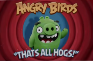 Portrayed by Angry Birds Ending