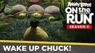 Angry_Birds_On_The_Run_-_Wake_Up_Chuck!_-_Ep3_S2