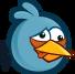 BIRD BLUE COLLISION