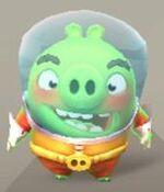 Зонд свинья 1.JPG