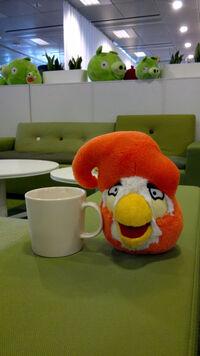 Coco Bird.jpg