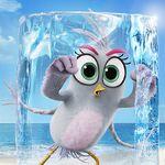 Kinopoisk.ru-The-Angry-Birds-Movie-2-3363090.jpg