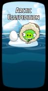 Арктическая яйцеэкспедиция
