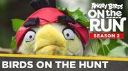 Angry Birds On The Run - Birds On The Hunt - Ep5 S2