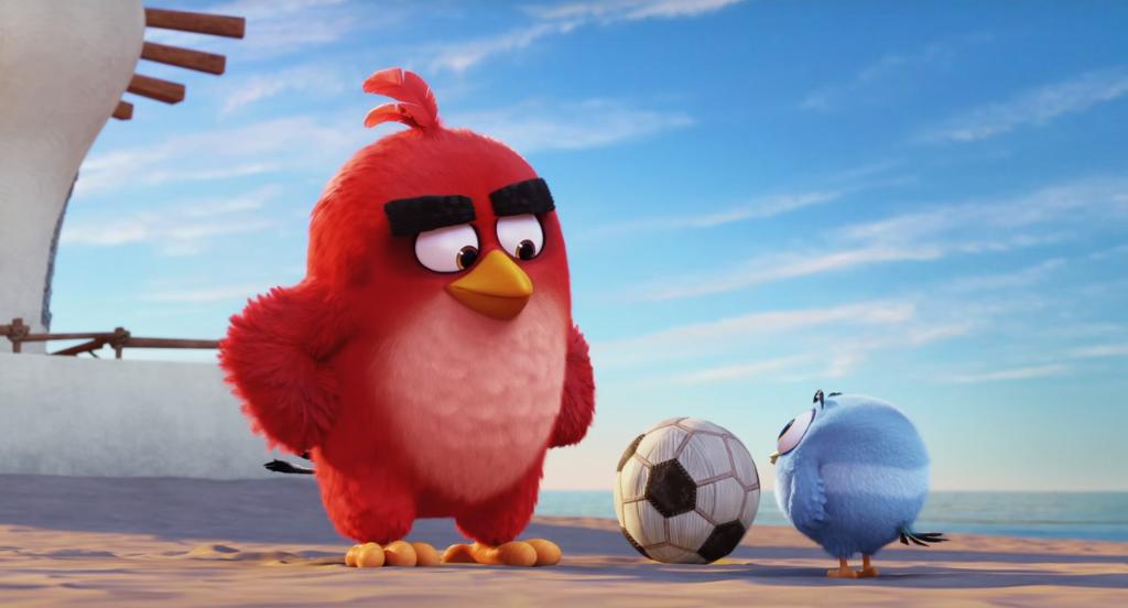 Soccer Boy Bird