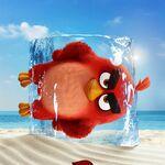 Kinopoisk.ru-The-Angry-Birds-Movie-2-3332337.jpg